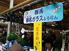 20140720_0039